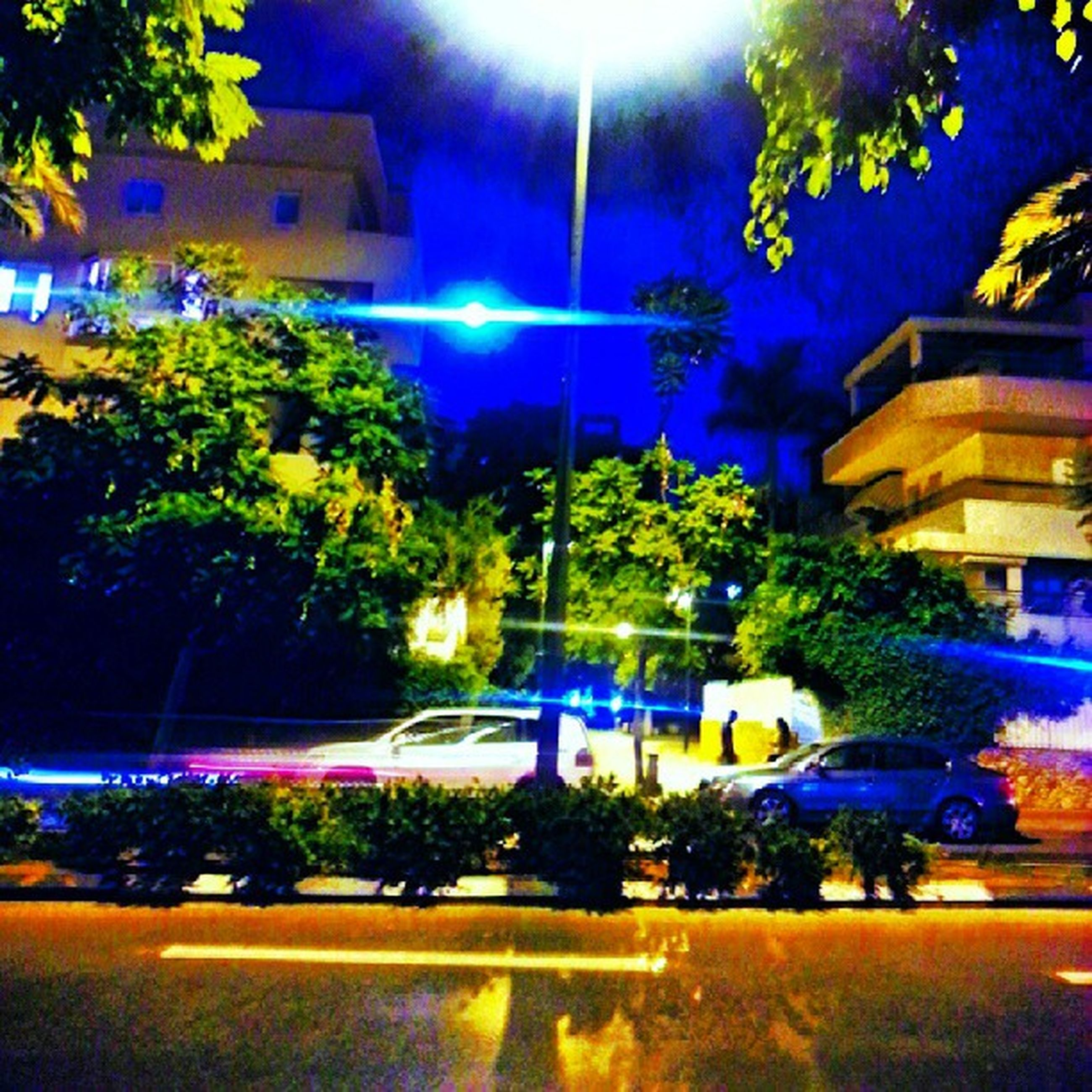 building exterior, tree, architecture, illuminated, built structure, city, night, street light, residential building, street, growth, house, residential structure, building, lighting equipment, car, outdoors, plant, incidental people, multi colored