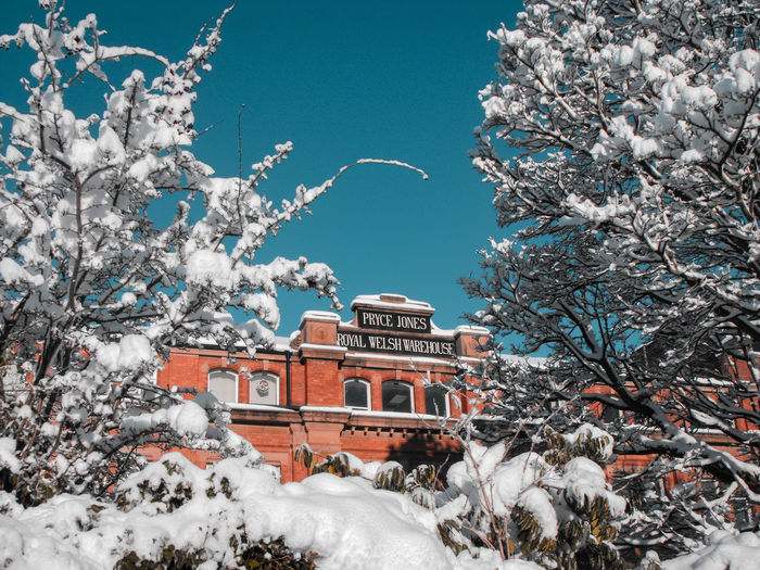 Price Jones building in snow Historical Building Department Store Mail Order Enterprise Wales UK Winter Countryside Town Winter Wonderland Roof Trees Victorian Victorian Architecture Wales British Snow On Branches Tree Snow Winter City Cold Temperature Architecture Sky Building Exterior Snowfall Deep Snow Historic Extreme Weather Bare Tree Powder Snow