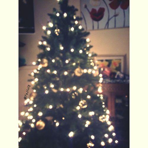 Last Christmas Christmas 2013 Christmas Tree