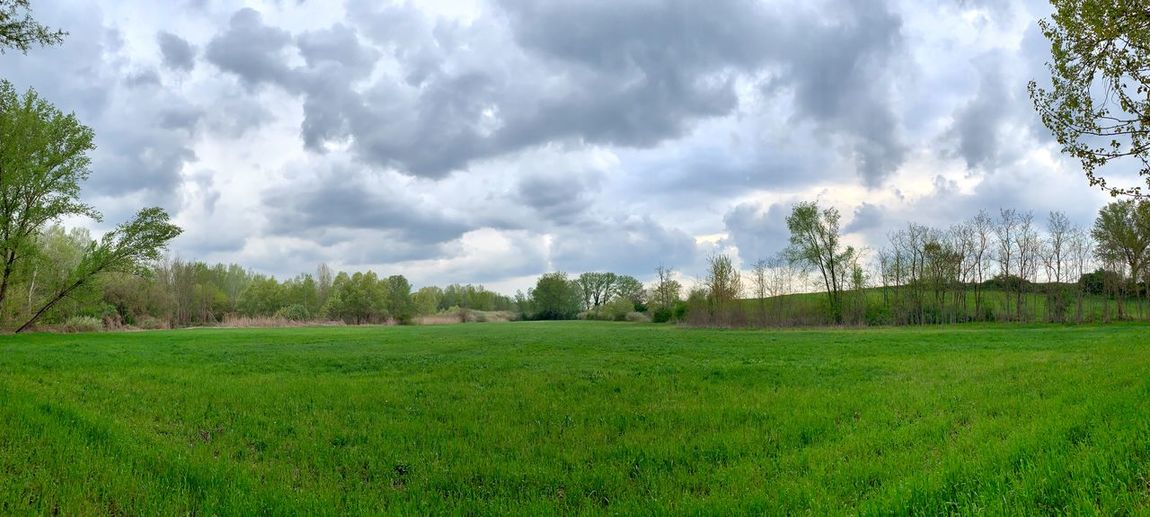 Italy, Mantova: countryside along river Po Daylight Day Time Cloud, Cloudy Sky Panoramic Horizontal Environment Non-urban Scene IPhoneography From A Distance Plant Tree Cloud - Sky Landscape Grass Green Color Land Nature Tranquil Scene Field Tranquility Day No People Scenics - Nature Beauty In Nature Rural Scene Relaxing Relax Outdoors Outdoor Photography
