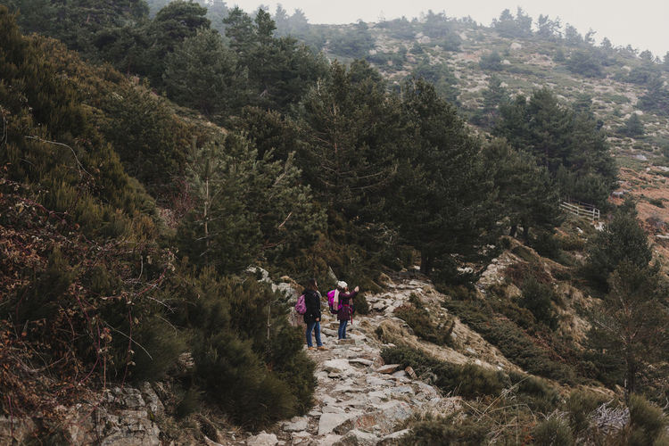 Hikers standing on mountain