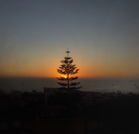 Sunset Silhouette Nature Beauty In Nature Sky Scenics No People Outdoors Tranquility Sea Tree