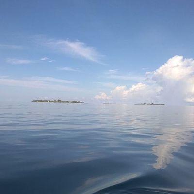 Gangehi Maldives Sea Sand Summer Dive Diving SCUBA Life Lifestyle Likeforlike Follow4follow Followme Follow Tag TagForLikes Tagstagram Tagpeople Tagphoto Tag4live Tag4like Instantidivita_ Instagood Istanday Instango picoftheday