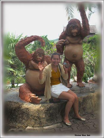 Victor Noc Art 🎱 Nong Nooch Tropical Bothanical Garden Pattaya City Thailandia 2016 Pui E Victor Ragazze Thailandesi EyeEmNewHere Victor Noc Art VicNocArt Vittorio Nocente Scimmie