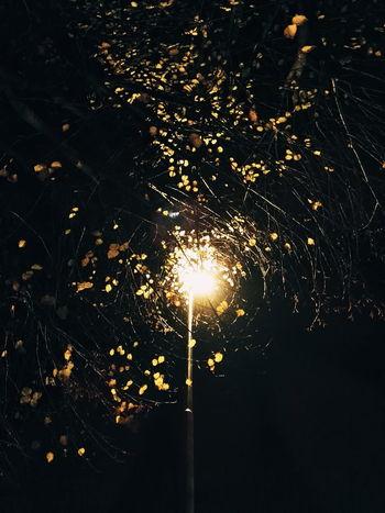 Illuminated Night Outdoors Beauty In Nature Vibrant Color Streetphoto Outdoors Cityscape Streetphoto_color Street BestofEyeEm Still Life Streetlights Streetlights And Sky Autumn Light Autumnal