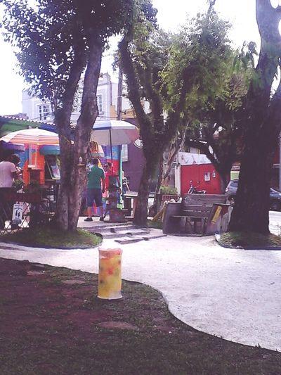 Curitibacool Cwb Brazil Sunday