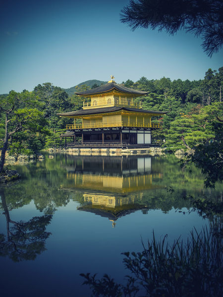 Kinkaku-ji ASIA Buddhist Gold Golden Japan Trees Architecture Day Golden Pavilion  Kyoto Lake No People Outdoors Sky Temple An Eye For Travel