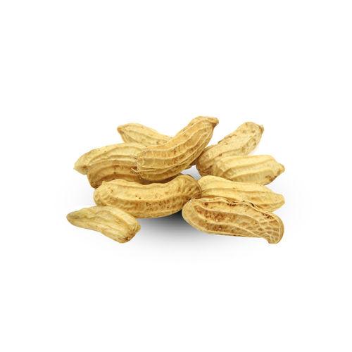 Peanut Isolated