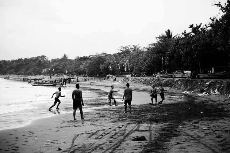 Group Of People Sport Real People Tree Playing Nature Sky Day Plant Large Group Of People Land Men Leisure Activity Crowd Lifestyles Full Length Outdoors Women Group Togetherness Beach