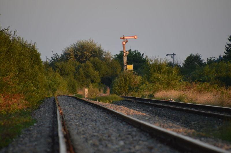 Clear Sky Day Nature No People Outdoors Rail Transportation Railroad Track Railway Signal Sky The Way Forward Transportation Tree