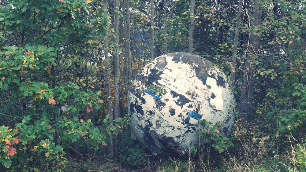 Spot the not... huge ball in the woods Nature Expect The Unexpected
