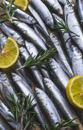 Full frame photo of fresh and frozen sardines with lemon and rosemary. Citrus Fruit Food Food And Drink Freshness Lemon Seafood Healthy Eating Wellbeing Fish Fruit Vertebrate SLICE No People Animal Close-up Indoors  Raw Food Lime Still Life High Angle View Herb Orange