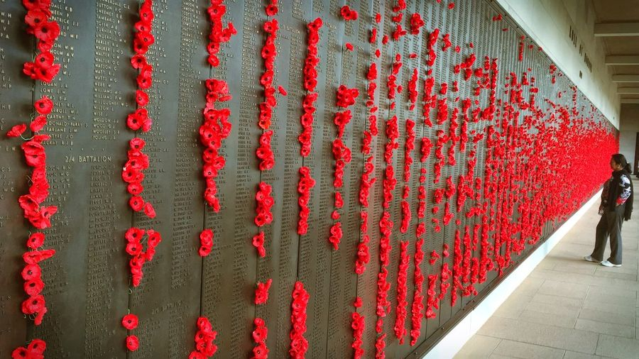 Sad Memorial of Fallen Soldiers at the War Memorial in Canberra / Poppies