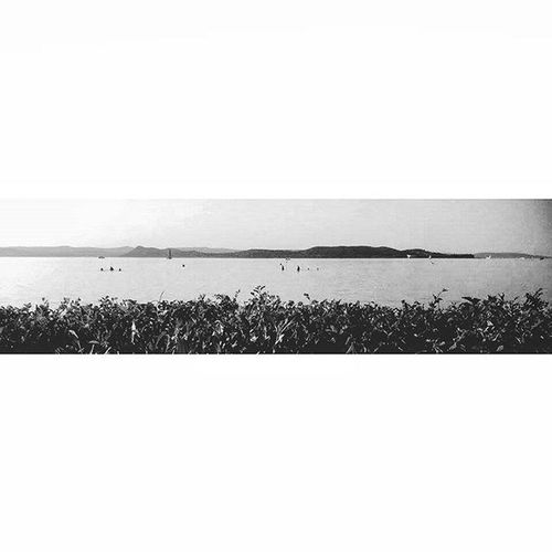 Lake Balaton Panorama Blackandwhite Blackandwhitephotography Bnw Bnw_captures Nature Naturlovers Mik Igers_hungary Ikozosseg Tihany Throwback Lovethisplace Minimalism