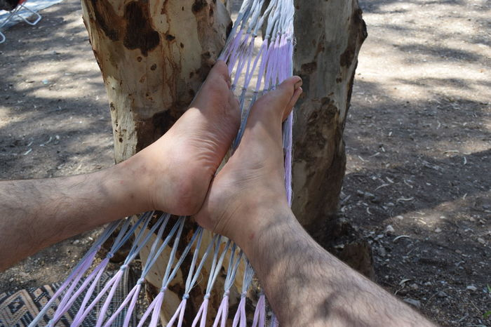 Camping Camping Out Chilling TakeoverContrast Hammock Israel Lakeside Legs Low Section Nature Outdoors Part Of Part Of Person Picnic Resting Summer Summer Activity Tranquility Traveling Tree Tree Trunk Trip Vacations Weekend Activities