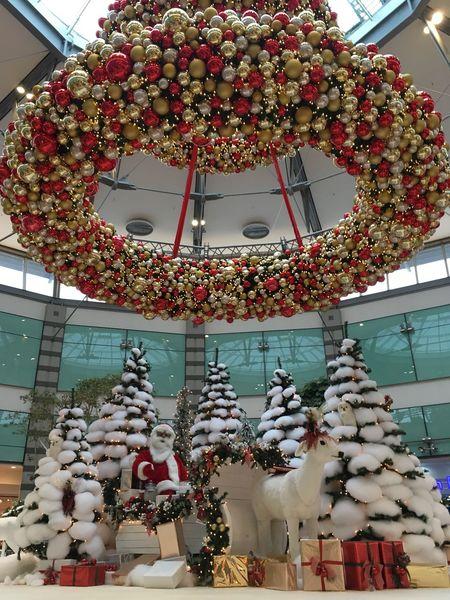 Рождественская Ёлка Christmas Trees Christmas Decoration рождество Новый год Low Angle View Architecture Built Structure Celebration Building Exterior Christmas Christmas Decoration