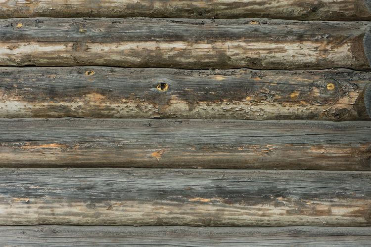 Full frame shot of an animal wood