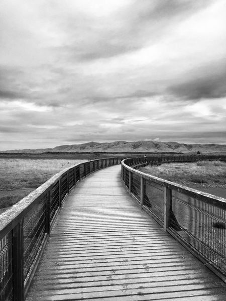 Baylands Sky Railing Nature Outdoors The Way Forward Beauty In Nature Tranquility Blackandwhite California Shootermag EyeEm Best Shots Bw_collection Baylands Park Sunnyvale