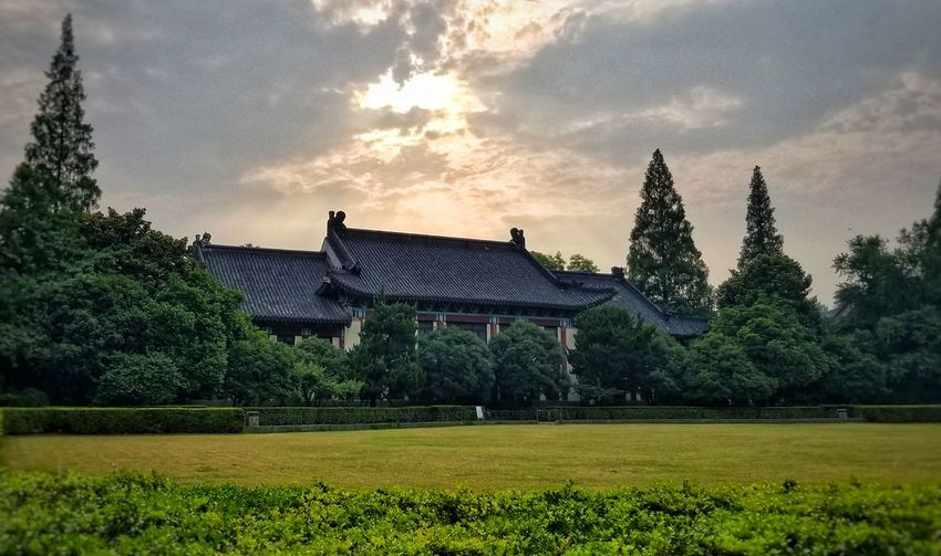 Plant Sky Architecture Cloud - Sky Tree Built Structure Green Color Grass No People Field Building Exterior Outdoors Beauty In Nature Travel Destinations Growth Green Grass