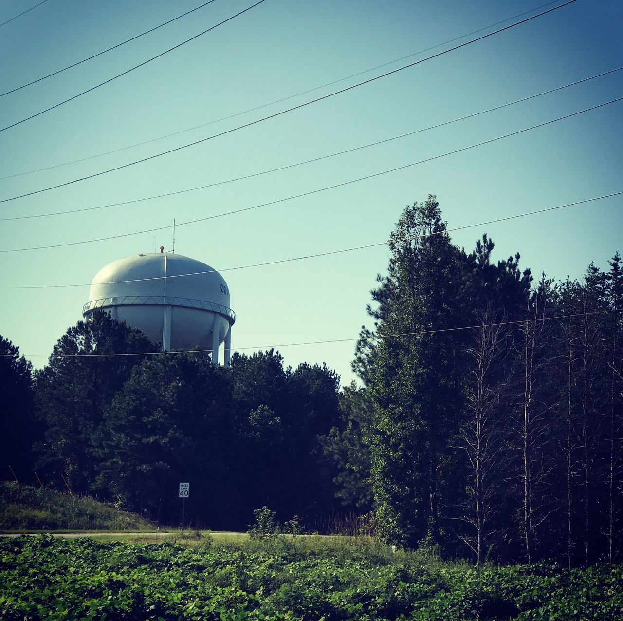 tree, cable, fuel and power generation, storage tank, no people, day, growth, clear sky, architecture, outdoors, sky, nature