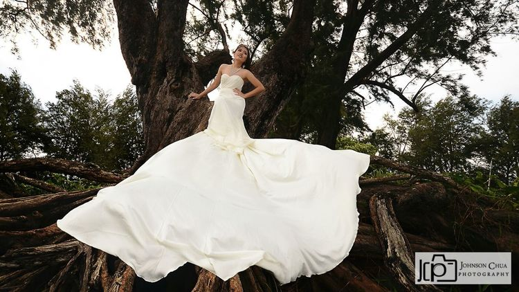 Photoshoot wedding gown . Taking Photos Enjoying Life Model Pose Model Models Modeling Shoot Modelgirl Self Portrait Hi! Today's Hot Look