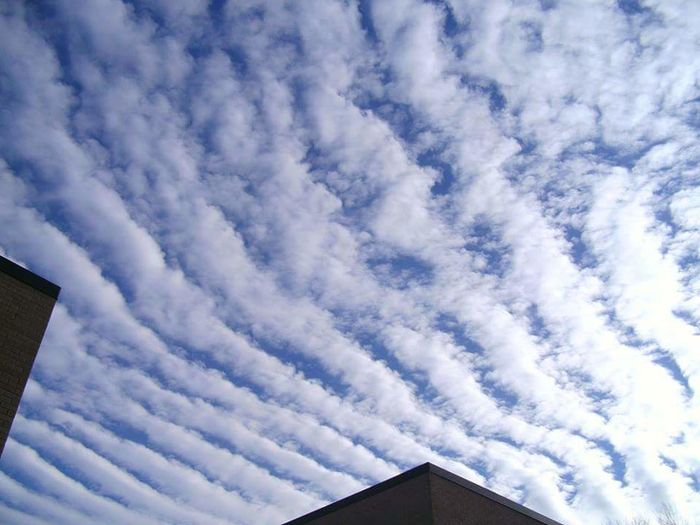 Sky Low Angle View Cloud - Sky Built Structure No People Building Exterior Outdoors No Filters Or Effects GeoEngineering Spraying Chemtrails Aerosols Whatthefuckaretheyspraying Chemical Sky Lines In The Sky