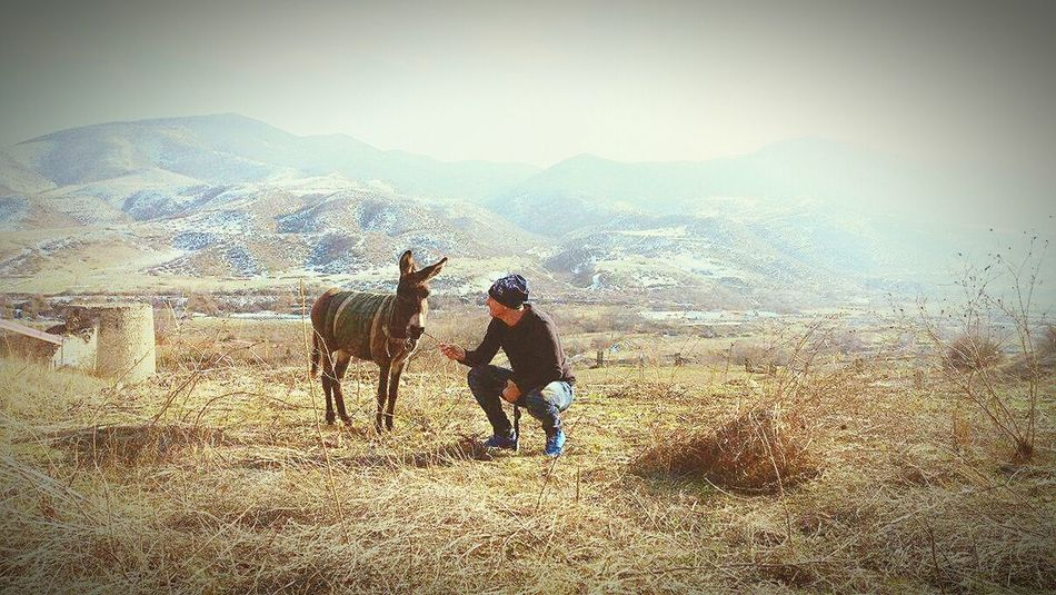 Beautiful natural place in Nagomo -Karabah, Mountain Lifestyles Healthy Lifestyle Domestic Animals