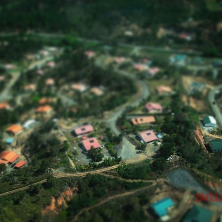 Il faisait si chaud ce jour-là... It was so hot that day Tilt-shift Landscape Selective Focus Aerial View Green Color Day