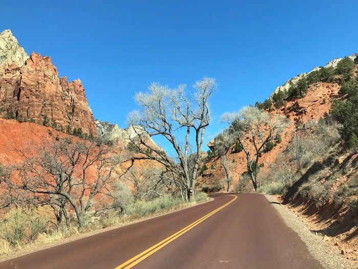 Landscape of road through orange hills and cliffs and bare trees Zion National Park Road The Way Forward Road Marking Bare Tree Tree Day Transportation Nature Blue Sunlight Clear Sky Landscape Tranquility Dividing Line Outdoors No People Asphalt Scenics Tranquil Scene White Line
