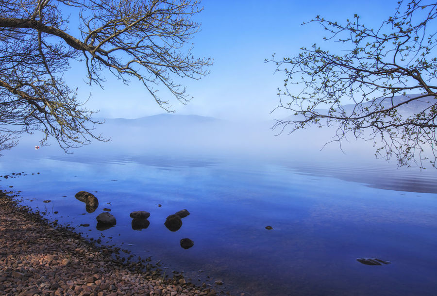 Mysterious fog at Loch Ness Lake, Scotland, UK Beauty In Nature Day First Eyeem Photo Fog Fog Over Water Foggy Lake Landscape Loch  Loch Ness Mistic Place Morning Nature Ness No People Outdoors Plant Reflection Reflection Scenics Scotland Sky Tree Uk Water