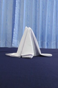 Napkin Folding NapkinFolding Napkins Absence Bed Blue Clothing Covering Curtain Day Full Length Furniture Hanging Hiding Hotel Service Indoors  Linen Napkin No People Restaurant Security Sheet Single Object Textile White Color
