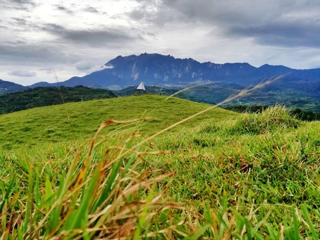 Mountain Cloud - Sky Nature Landscape Sky Grass Beauty In Nature Freshness Day Outdoors Tree Bluemountain Green Green Green!  Greengrass Stunning View Myvillage💜 Kibbas Ranausabah