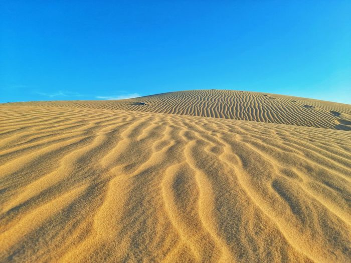 Wave of sand dunes on desert