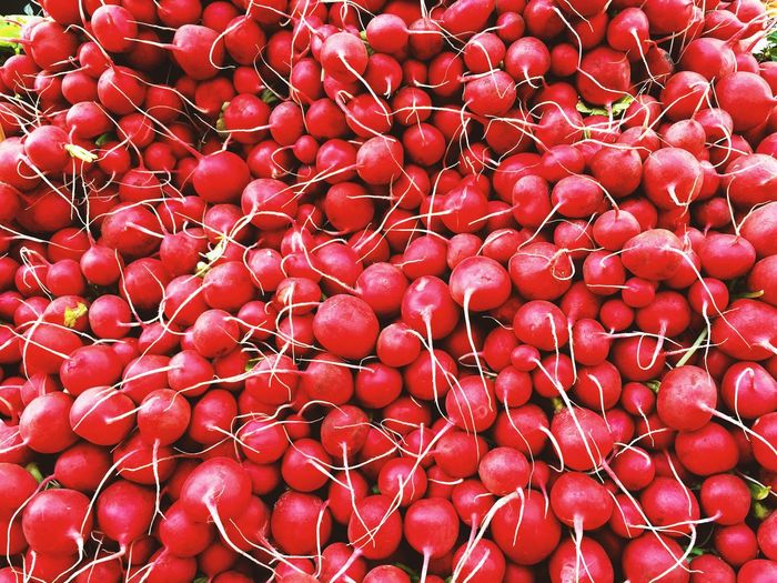 Radish Vegetables Red Full Frame Large Group Of Objects Backgrounds Abundance Wellbeing Healthy Eating Food And Drink Food Freshness Still Life Day Market Stall Market