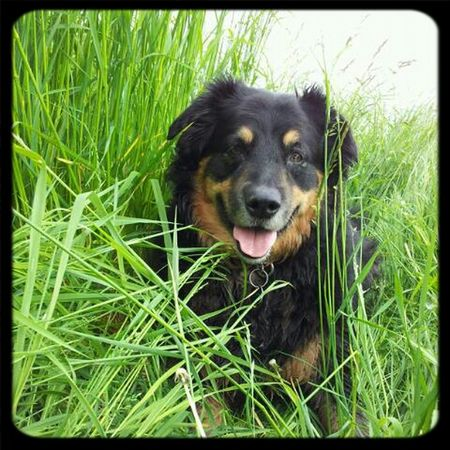 Good morning World :) <3 I Love My Dog Cheese! Check This Out