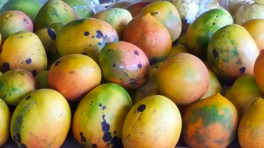 Mangos Healthy Eating Healthy Lifestyle Tropical Fruits Farmers Market Island Life Samsung Note 5