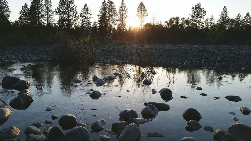 Little Bay Eddy on the Spokane River walking the Centennial Trail at Evening Light , Rocks And Water Reflections Nature_collection Walking Around Enjoying Life Reflection_collection , River View , hope you all enjoy, thanks, Adam O The Essence Of Summer