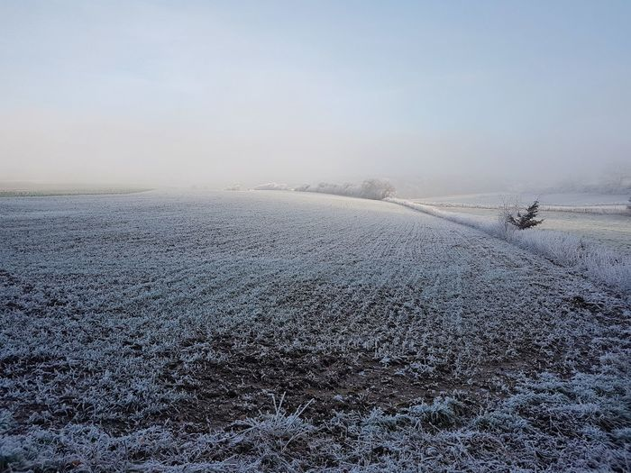 Winter Plowed