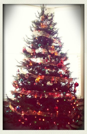 Our lovely Vintage Christmas! It's taking all of my will power to not move the ornaments the kids hung. :P