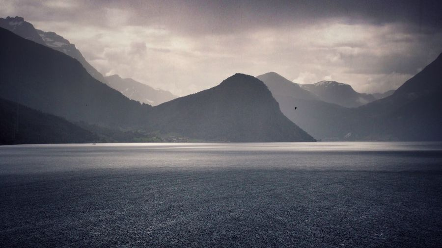 A seagull and I got caught in a sudden downpour in Bjørje, Norway. This was my favorite place during my 2 week road trip through the country. Wanderlust Norway Bjørke Hjørundfjord Road Trip Fjords Fjordsofnorway Fjordland Norway Nature Landscape Nature_collection Landscape_Collection Landscape_photography