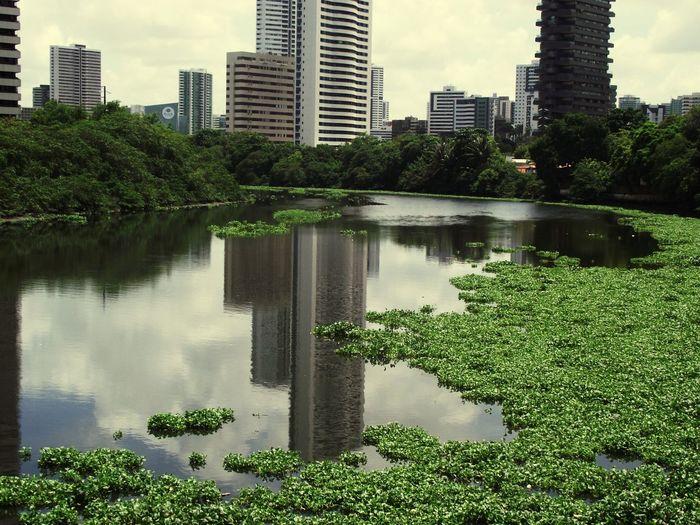 Saturday morning... CasaForte Water Reflections Urban Landscape