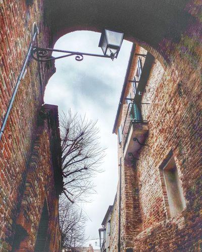 Brick Wall The