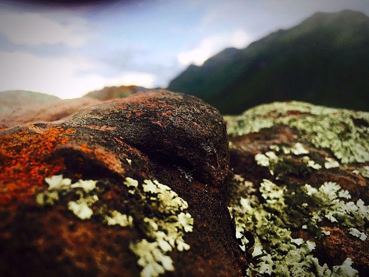 Close up. Rock Hilltop Valle Sagrado Pisac Perú Makro