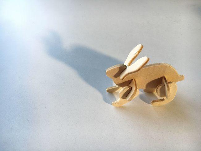 Wooden Rabbit Long Shadow Light Play