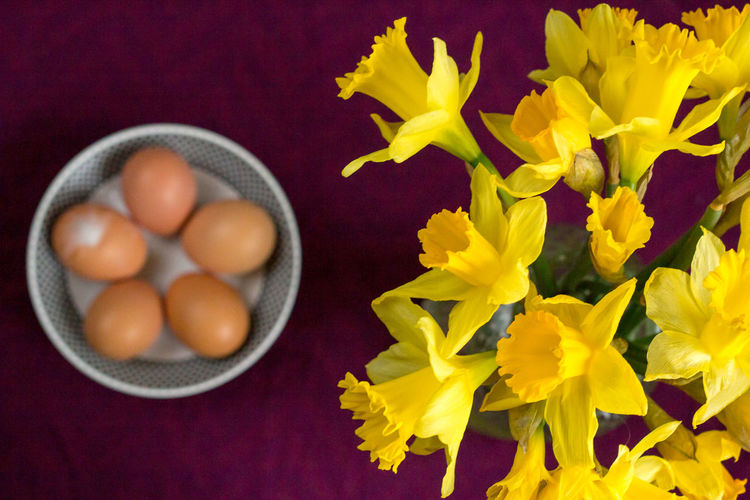 High Angle View Of Yellow Daffodils With Eggs In Bowl On Table