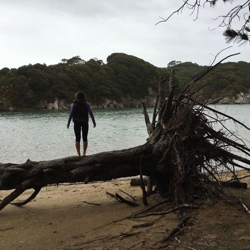 Stormy weather, Stormy mood People And Places Rear View Full Length Tree Water Standing Tranquil Scene Lake Walking Men Tranquility Scenics Idyllic Sky Solitude Vacations Nature Beauty In Nature Remote Person Day Stormy Weather Fallen Tree Standing On A Tree