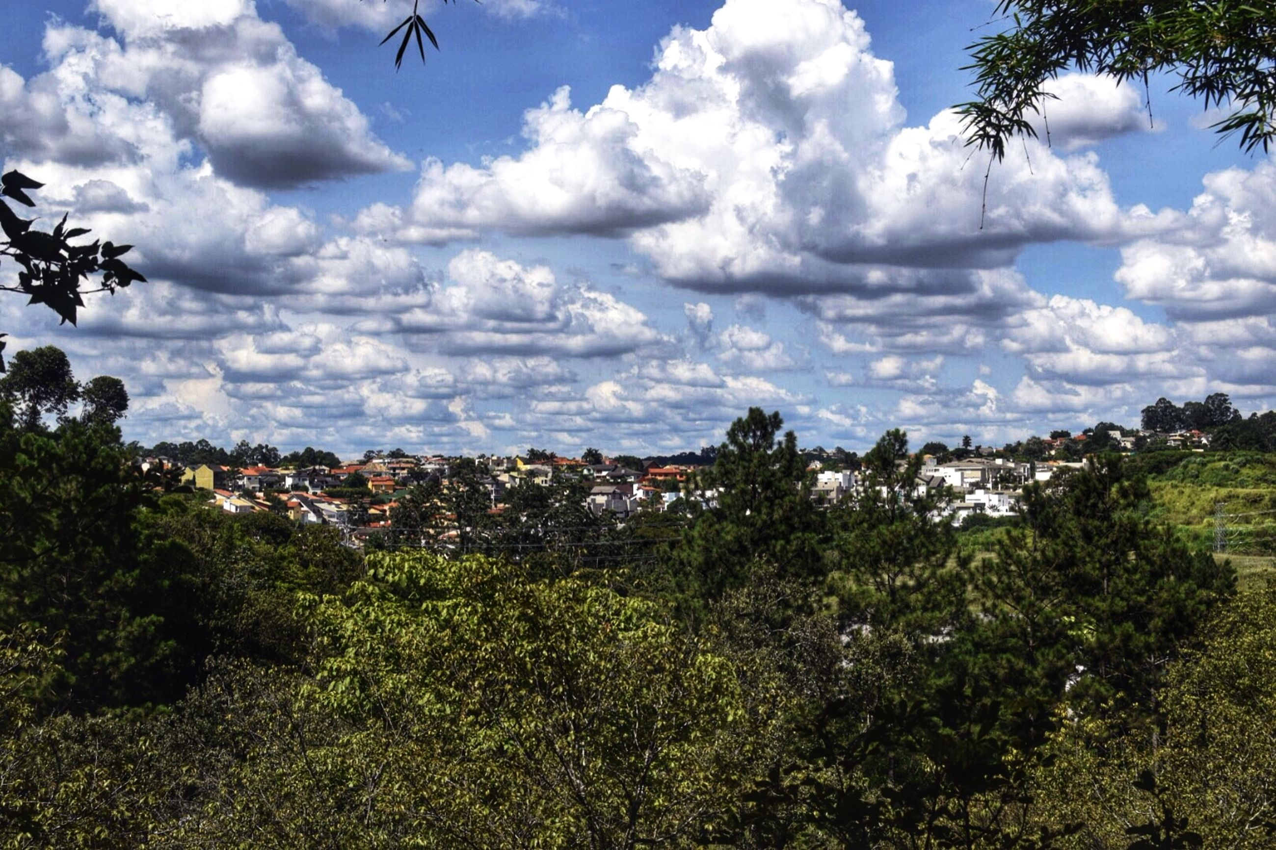 sky, cloud - sky, tree, cloudy, cloud, growth, building exterior, nature, built structure, green color, field, plant, beauty in nature, architecture, day, landscape, tranquility, tranquil scene, outdoors, scenics