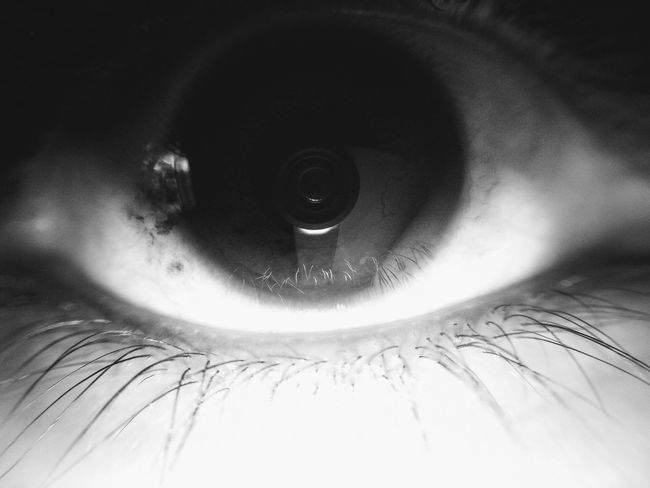 Human Eye Looking At Camera Human Body Part One Person Full Frame Sensory Perception Eyesight Indoors  Close-up Eyelash Portrait People Eyeball Iris - Eye Adult Adults Only Day