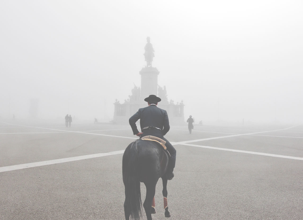 Rear view of man riding horse in foggy weather