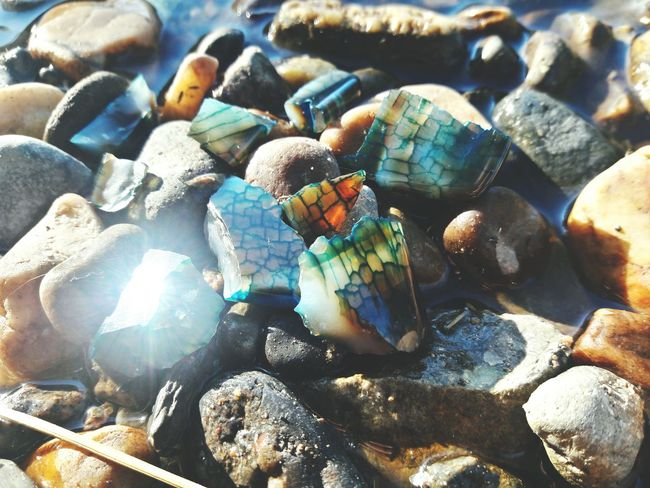 EyeEm Selects Sea Full Frame Beach No People Seashell Nature Backgrounds Pebble Large Group Of Objects Close-up Day Sea Life Outdoors Water Beauty In Nature